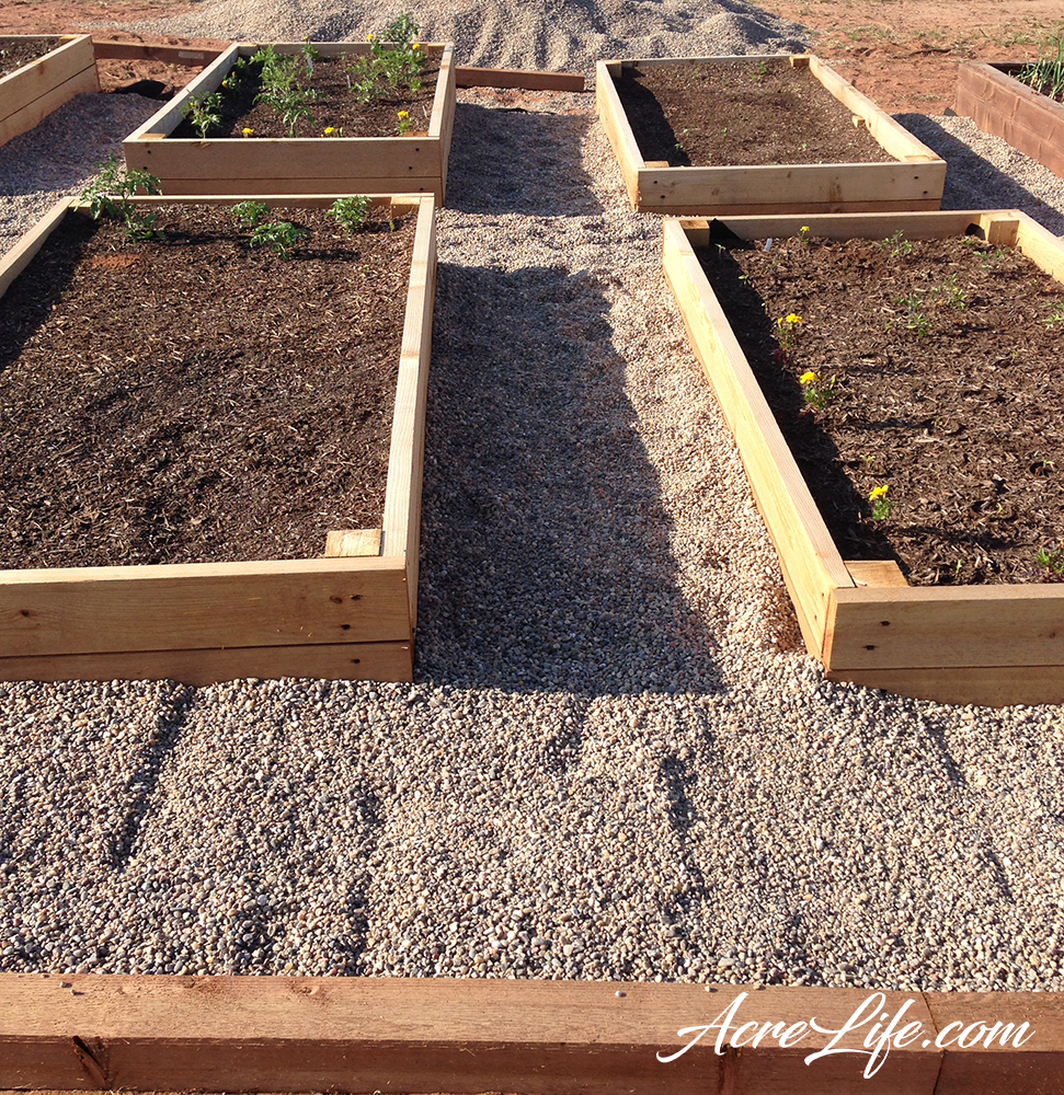 Gravel Walkway Complete Around Raised Garden Beds - AcreLife