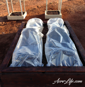 Our covered raised garden beds to protect from weather and insects - Acre Life