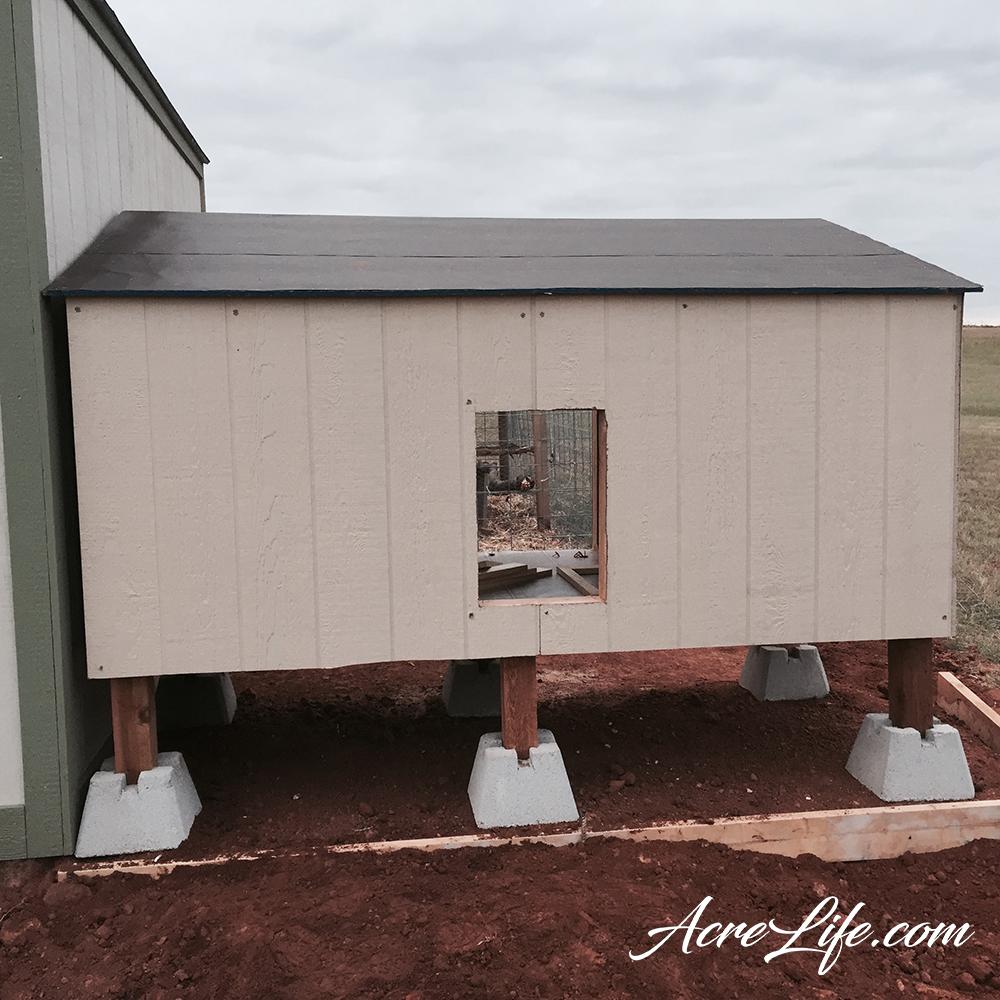 Building a Guinea Coop - AcreLife