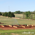 Our raised garden beds in year 1 - Acre Life