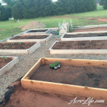 Our raised garden beds in year 2 - Acre Life