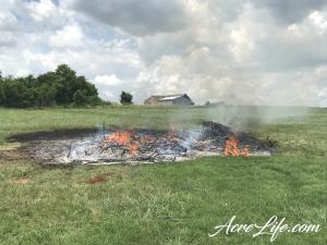 Burned Cedar Branches - Acre Life