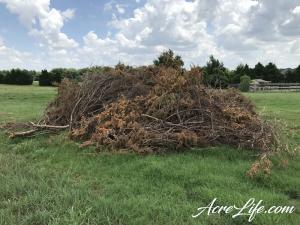 Cedar Branch Burn Pile - Acre Life