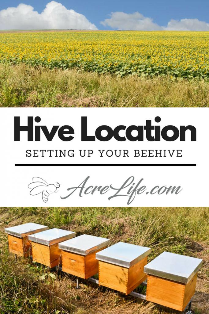 Bee Hive Location - Acre Life -