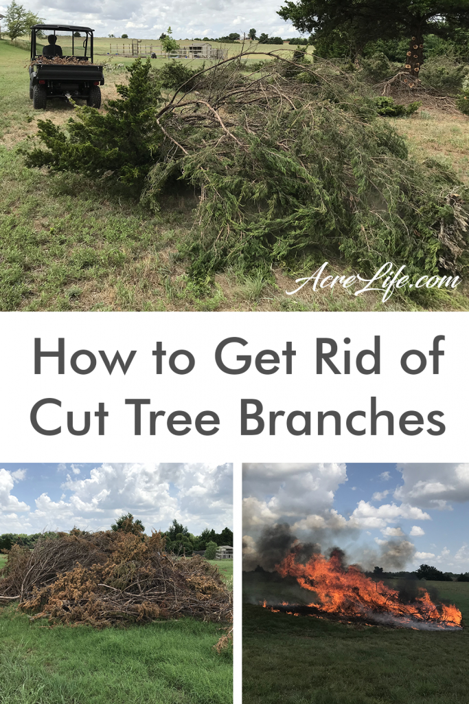 What To Do With Cut Tree Branches - Acre-Life - I loved the ideas for recycling and getting rid of the branches. I can't wait to trim my cedar trees!