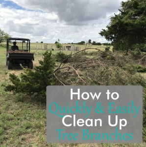 What To Do With Cut Tree Branches - Acre-Life