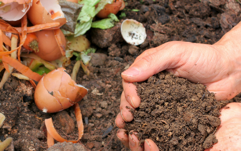 Composting in the winter - Acre Life