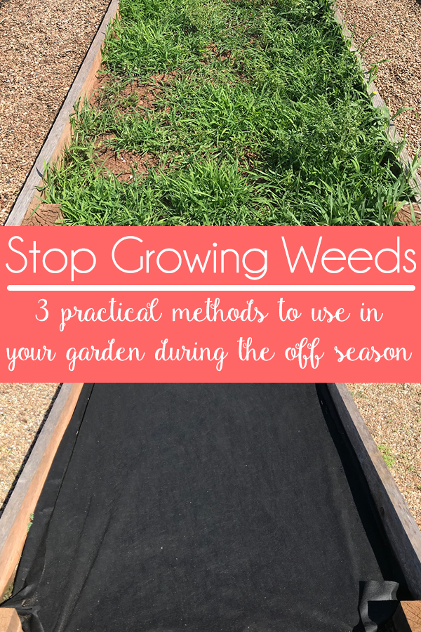 Stop Growing Weeds - Acre Life