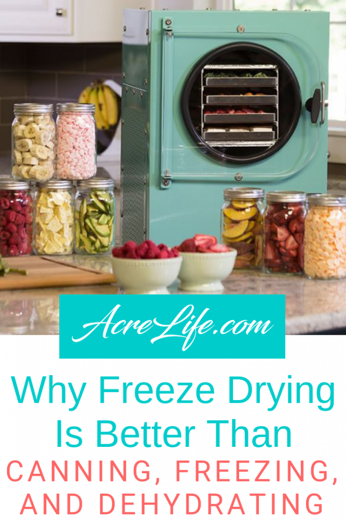 Why Freeze Drying Is Better Than Canning, Freezing, and Dehydrating