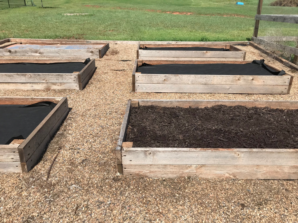 Raised beds covered with landscape fabric, mulch, and plywood. Experimenting with the best way to prevent weeds.