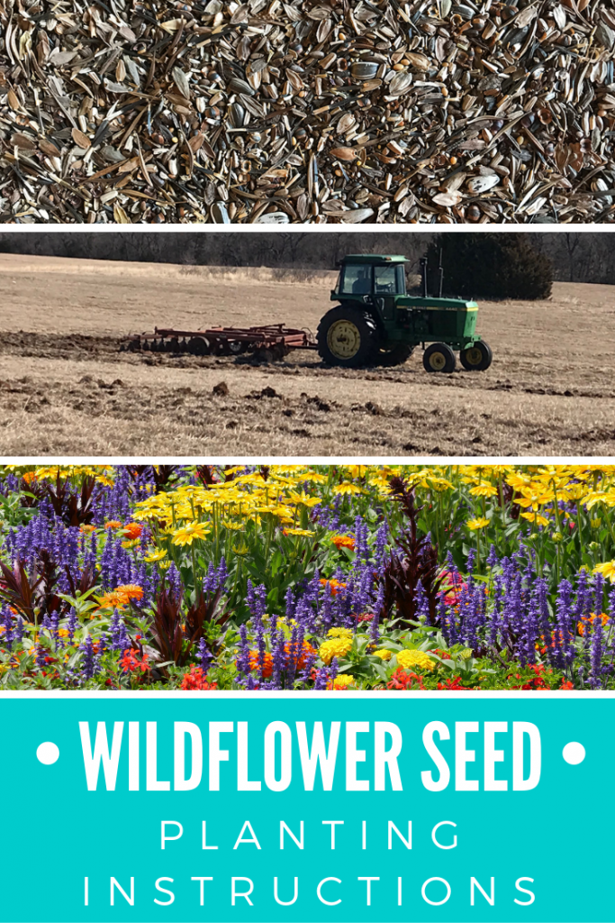 Wildflower Seed Planting Instructions from AcreLife.com