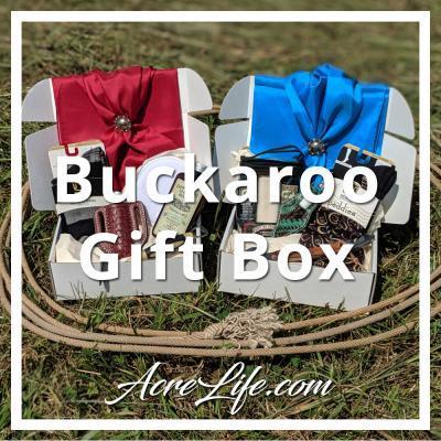 Buckaroo Box