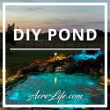 DIY Koi Pond - Acre Life