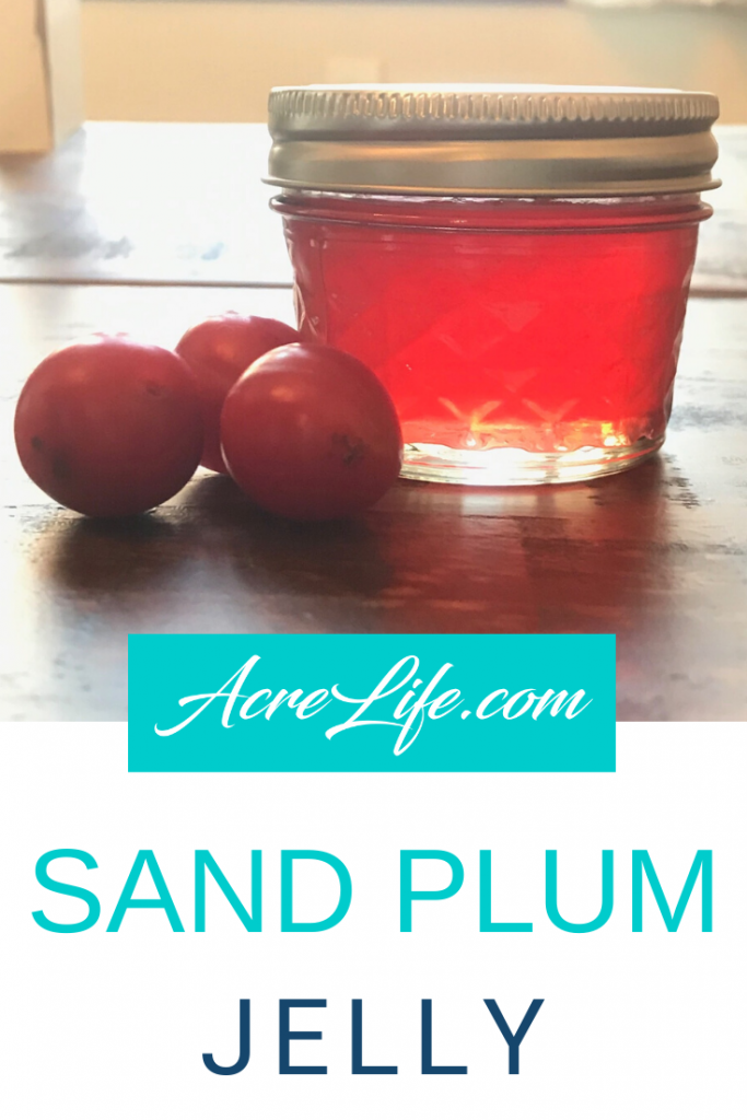 Sand Plum Jelly - Acre Life