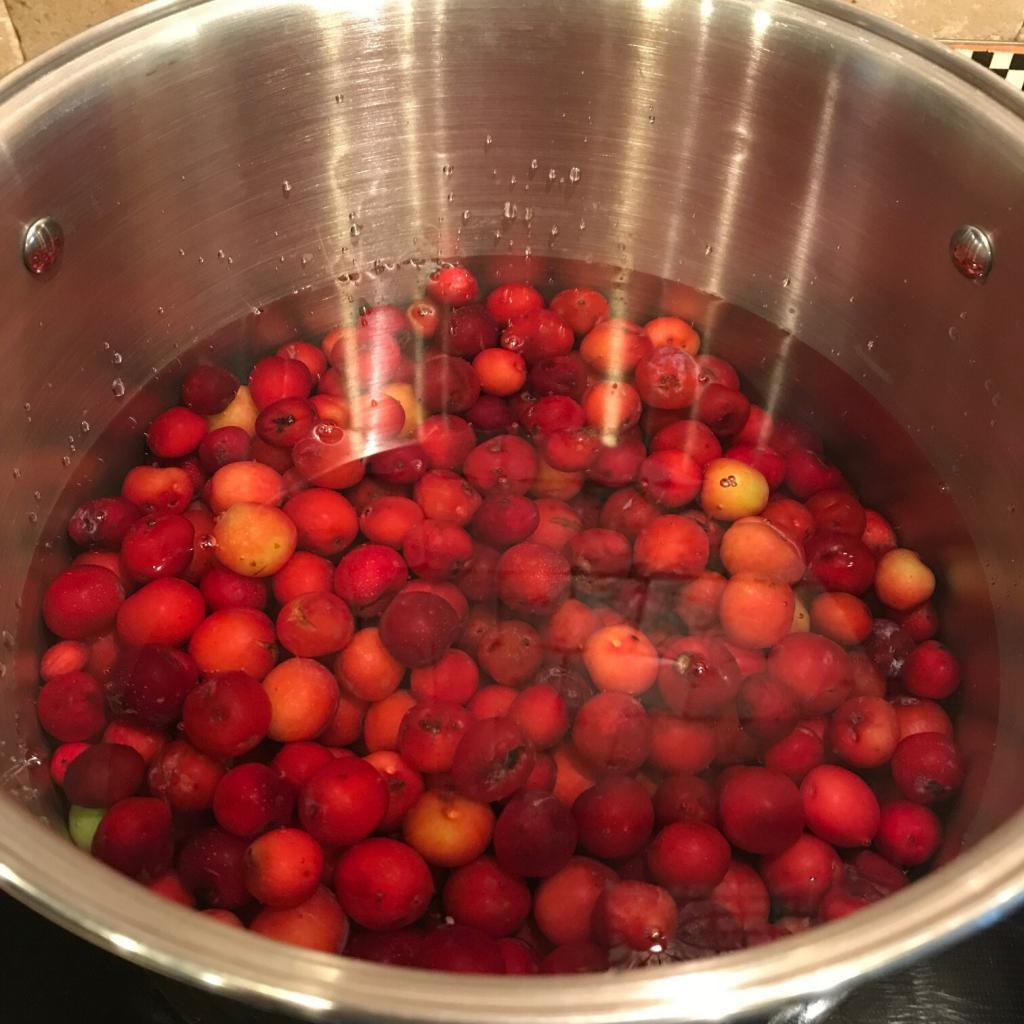 Simmer Sand Plums - Acre Life