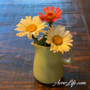 Cut Wildflowers - Acre Life