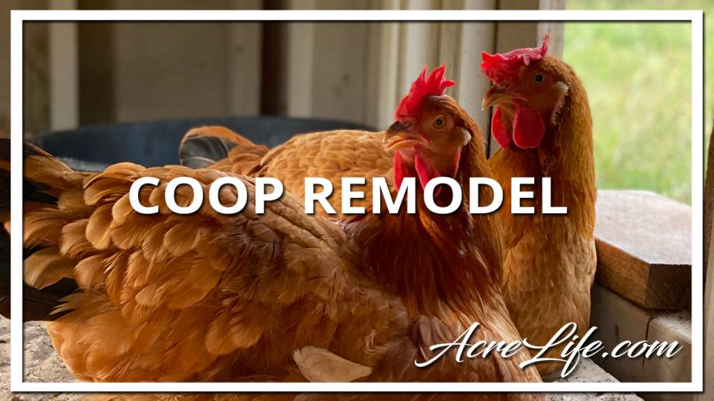 Chicken Coop Remodel - Acre Life