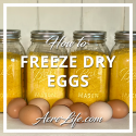 How To Freeze Dry Eggs - Acre Life