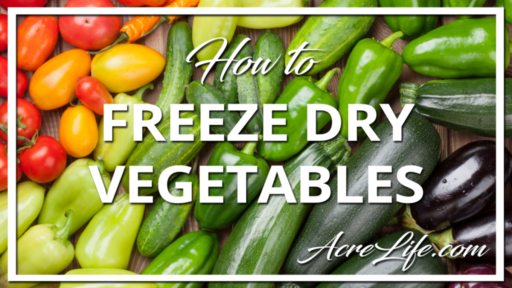 How to Freeze Dry Vegetables