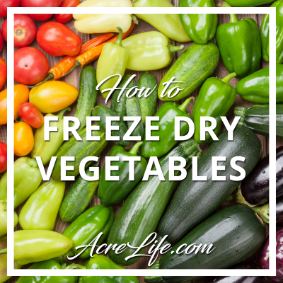 Freeze Dry Your Excess Garden Vegetables