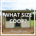 What Size Chicken Coop Do I Need?